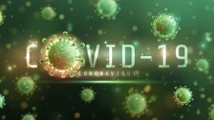 Ontag: Covid-19 uma catástrofe humana ou económica?